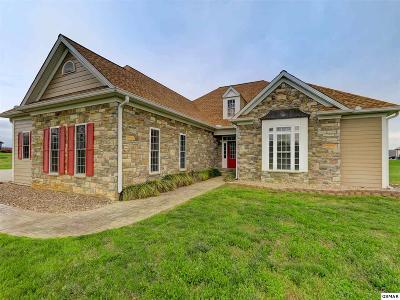 Dandridge Single Family Home For Sale: 2330 Wild Pear Trail