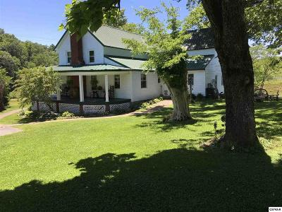 Sevier County Single Family Home For Sale: 806 Gists Creek Rd