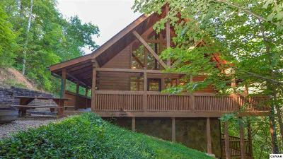 Gatlinburg Single Family Home For Sale: 905 Valley Drive