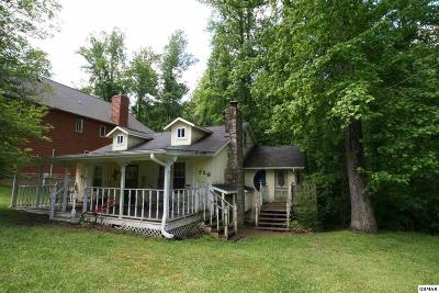 Gatlinburg Single Family Home For Sale: 726 Dogwood Ln