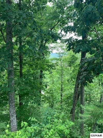 Sevierville Residential Lots & Land For Sale: Lot 45 Cloud View Drive