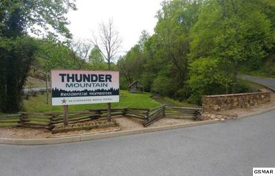 Sevierville Single Family Home For Sale: 5 Thunder Mountain Dr.