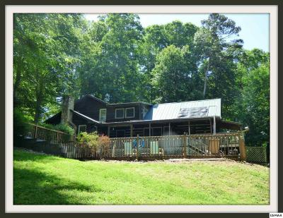 Sevier County, Jefferson County Single Family Home For Sale: 1311 Ledgewood Lane