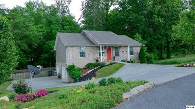 Sevierville Single Family Home For Sale: 2255 Murphys Chapel Dr
