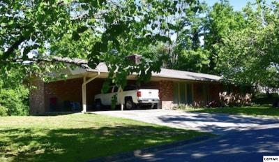 Sevierville Single Family Home For Sale: 370 Mount Dr