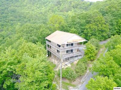 Sevier County Single Family Home For Sale: 1146 Eagle Pt
