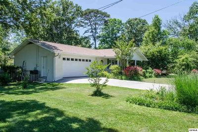 Sevierville Single Family Home For Sale: 1335 Beechview Drive