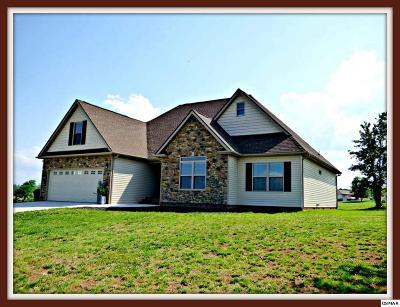 Dandridge Single Family Home For Sale: 517 Mountain Vista Trail