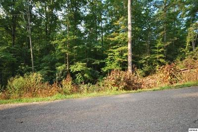 Residential Lots & Land For Sale: Lot 90 Pinnacle Vista Road