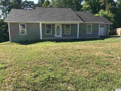 Dandridge Single Family Home For Sale: 844 Quiet Oaks Way
