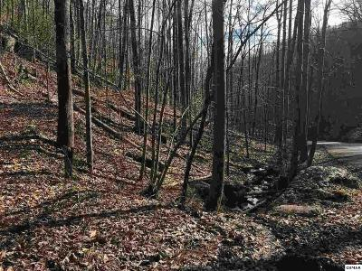 Sevierville Residential Lots & Land For Sale: Lot Lot Lot #34 Mountain Blvd
