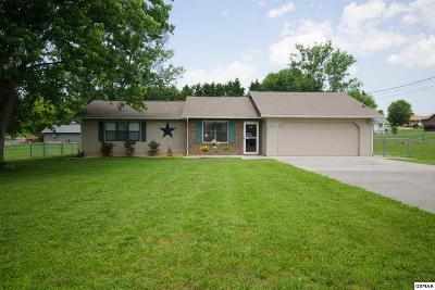 Sevier County Single Family Home For Sale: 434 Woods View Cir.