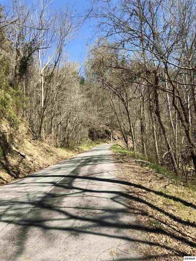 Sevierville Residential Lots & Land For Sale: Lot 6 Old Birds Creek Rd
