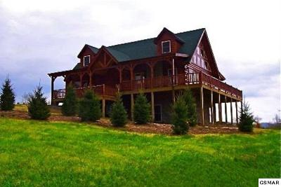 Pigeon Forge Single Family Home For Sale: 94 Alpine Mountain Way