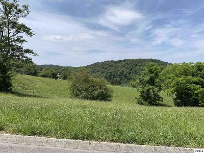 Hamblen County Residential Lots & Land For Sale: 2058 Turners Landing Road