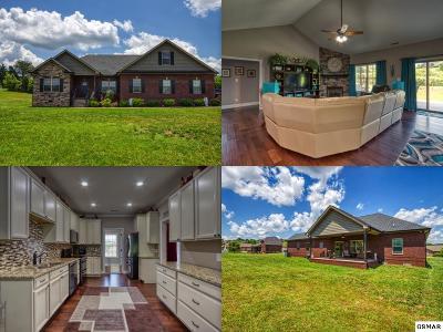Seymour Single Family Home For Sale: 407 Winners Circle