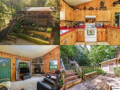 Sevierville Single Family Home For Sale: 4040 McCarter Circle