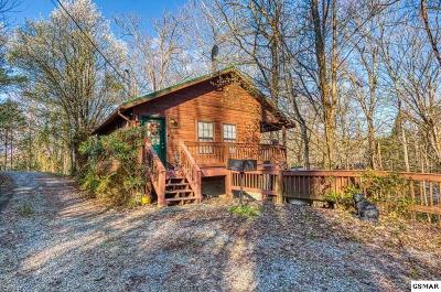Sevierville Single Family Home For Sale: 1930 Regans Ridge Way