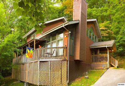Gatlinburg Single Family Home For Sale: 1580 Zermatt