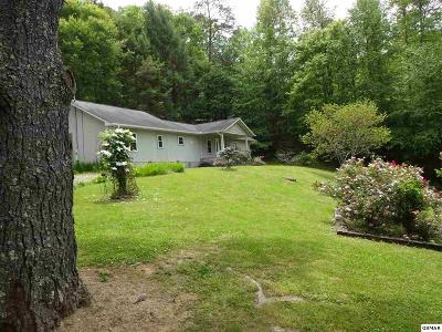 Sevierville Single Family Home For Sale: 5718 Henry Town Road