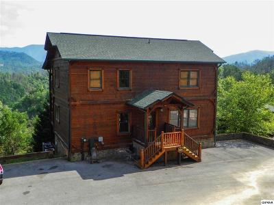 Gatlinburg Single Family Home For Sale: 823 Great Smoky Way