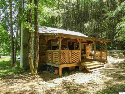 Sevierville Single Family Home For Sale: 3950 Wilhite Rd