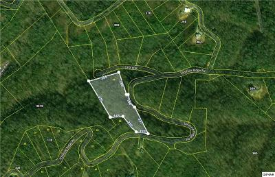 Residential Lots & Land For Sale: Sonshine Ridge Rd. Lot 28
