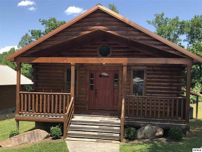 Gatlinburg Single Family Home For Sale: 160 White Oak Way
