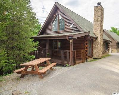 Sevierville Single Family Home For Sale: 1134 Carroll Hill Ln