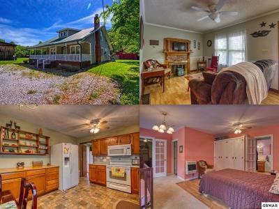 Cosby Single Family Home For Sale: 3896 Cosby Hwy