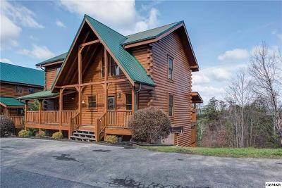 Pigeon Forge Single Family Home For Sale: 753 Chickasaw Gap Way