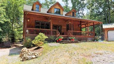 Cosby Single Family Home For Sale: 3350 Rocky Ridge Rd