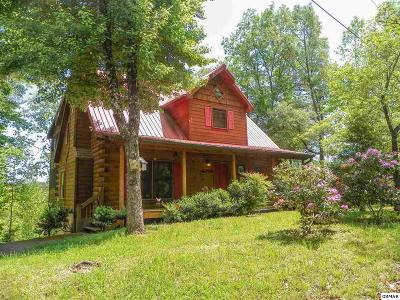 Sevierville Single Family Home For Sale: 2228 Hidden Mountain Road