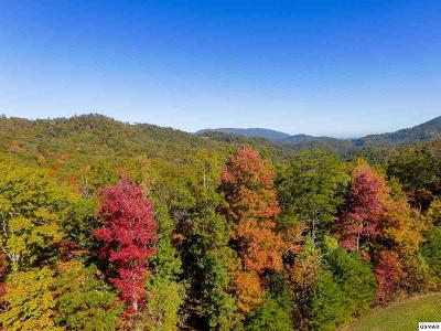 Blount County Residential Lots & Land For Sale: Tract 2 Long Rifle Rd