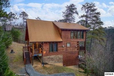 Sevierville Single Family Home For Sale: 1625 Barn Door Ln