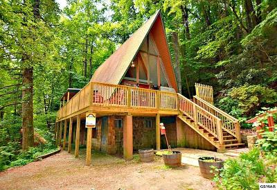 Gatlinburg Single Family Home For Sale: 913 Ski Mountain Road