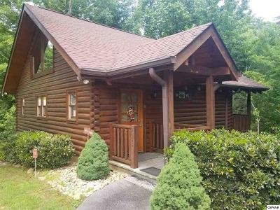 Sevierville Single Family Home For Sale: 2402 Whitetail Ridge