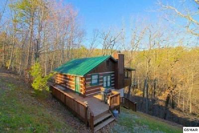 Sevierville Single Family Home For Sale: 1784 Blue Ridge Road