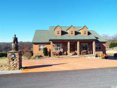 Sevierville Single Family Home For Sale: 2869 Luther Catlett Circle