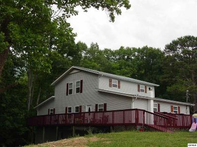 Sevierville Single Family Home For Sale: 2903 Covemont Road