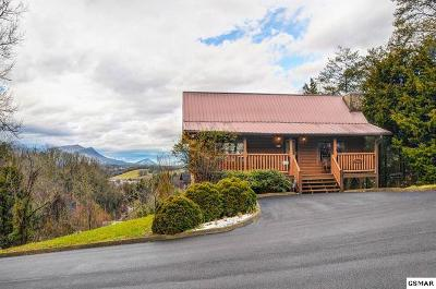 Sevierville Single Family Home For Sale: 1543 Rainbow Ridge Way