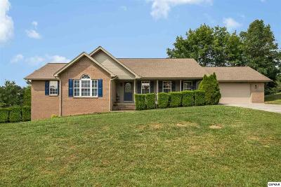 Kodak Single Family Home For Sale: 3049 Sugarwood Drive
