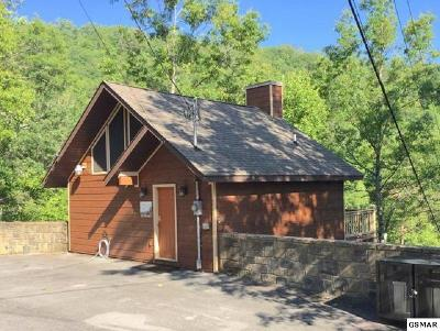 Pigeon Forge Single Family Home For Sale: 4559 Wilderness Plateau