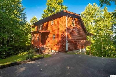 Sevierville Single Family Home For Sale: 1904 Rhododendron Lane