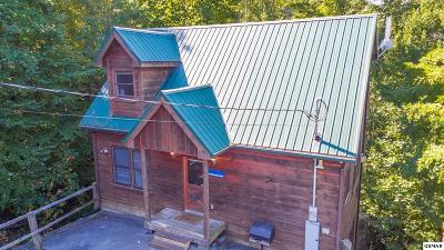 Sevierville Single Family Home For Sale: 1825 Cherry View Lane
