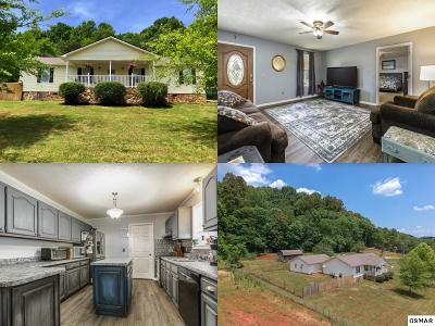 Greenback Single Family Home For Sale: 3625 Brooks Rd