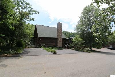 Sevierville Single Family Home For Sale: 1008 Walini Way