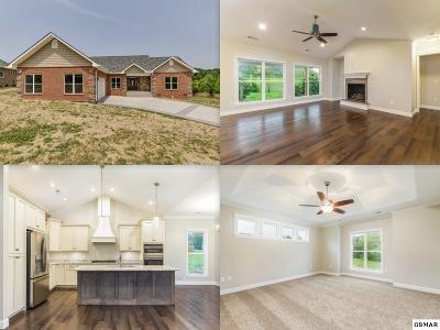 Sevierville Single Family Home For Sale: 1921 Pattons Way