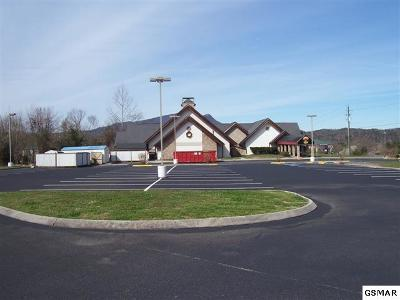 Pigeon Forge Commercial For Sale: 140 Showplace Blvd