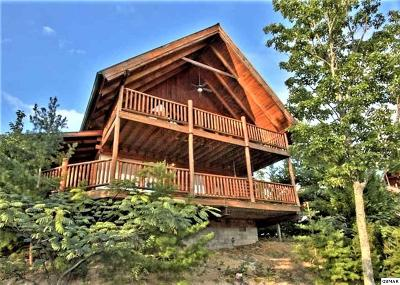 Sevierville Single Family Home For Sale: 3514 Carsons Ridge Way